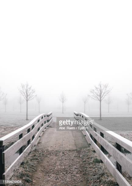 footbridge on foggy landscape against sky - bare tree stock pictures, royalty-free photos & images