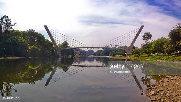 footbridge over the river piracicaba - crmacedonio 個照片及圖片檔