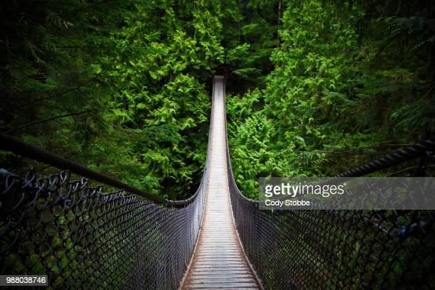 a footbridge through lynn canyon. - guidance stock pictures, royalty-free photos & images
