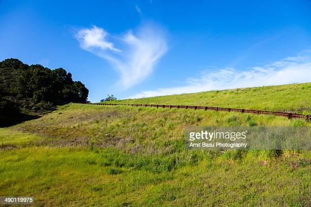 Foothills park, Palo Alto, California