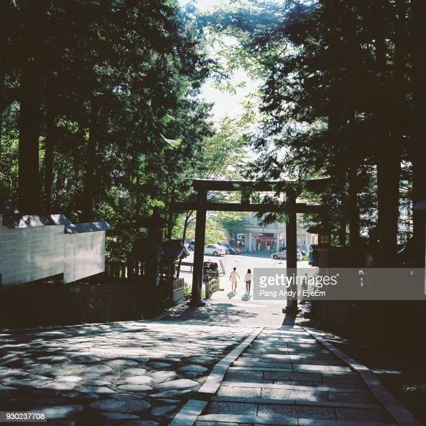 footpath against trees in park - 神社 ストックフォトと画像