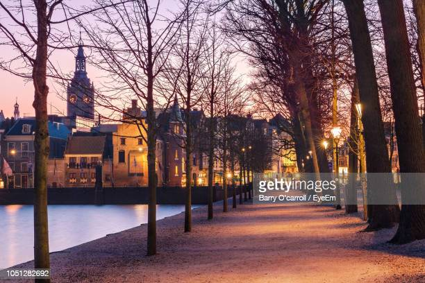 footpath amidst bare trees and buildings against sky during winter - rotterdam stock pictures, royalty-free photos & images