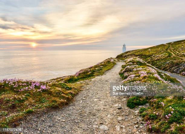 footpath amidst flowering plants against sky during sunset - cornwall england stock pictures, royalty-free photos & images