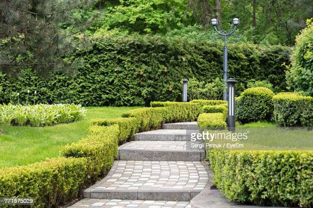 footpath amidst plants in park - landscaped stock pictures, royalty-free photos & images