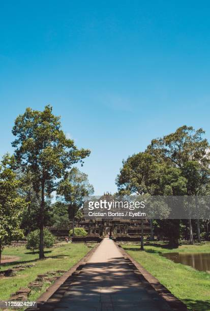 footpath amidst trees against clear blue sky - angkor wat stock pictures, royalty-free photos & images