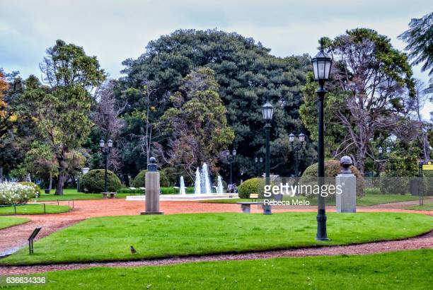 Footpath among grassy gardens