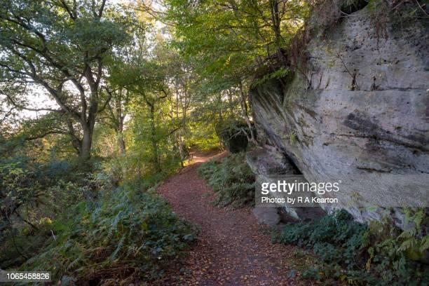 Footpath at Alderley Edge, Cheshire, England