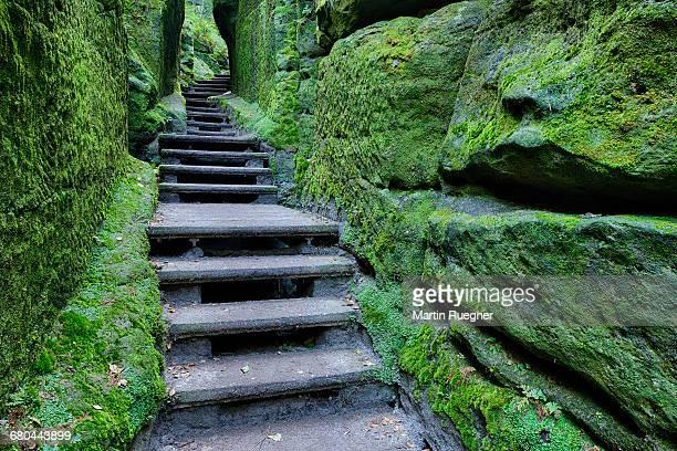 Footpath / Hiking Trail between sandstone rocks.