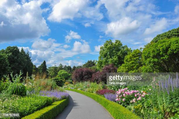 footpath in formal garden, ireland - image stock pictures, royalty-free photos & images