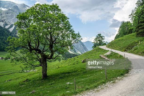 footpath in karwendel mountain - karwendel mountains stock pictures, royalty-free photos & images