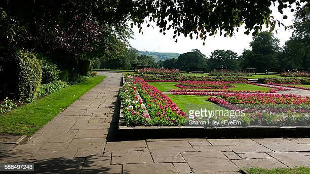 footpath in park - paving stone stock pictures, royalty-free photos & images