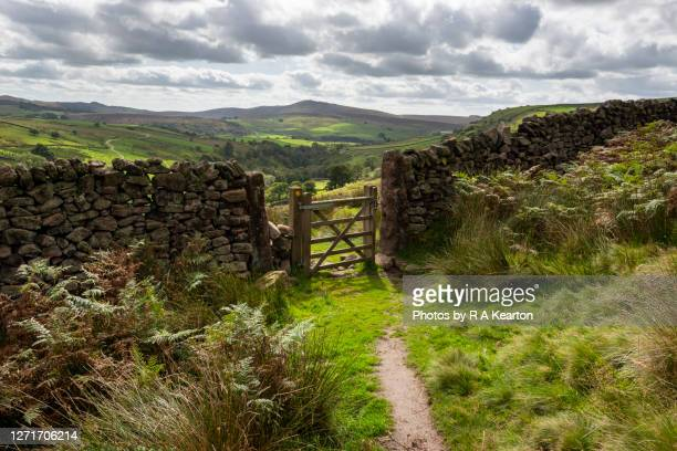 footpath in the staffordshire moorlands, peak district, england - peak district national park stock pictures, royalty-free photos & images