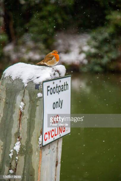footpath only - sign stock pictures, royalty-free photos & images