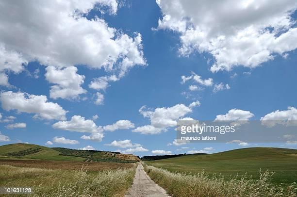 Footpath through landscapes
