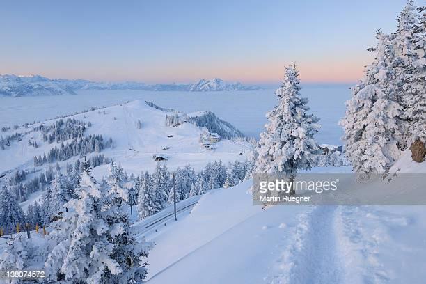 Footpath through winter landscape.
