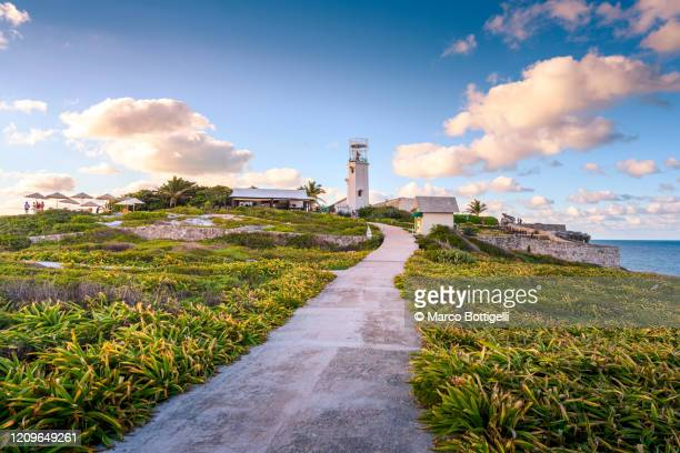 footpath to punta sur, isla mujeres, mexico - isla mujeres stock pictures, royalty-free photos & images