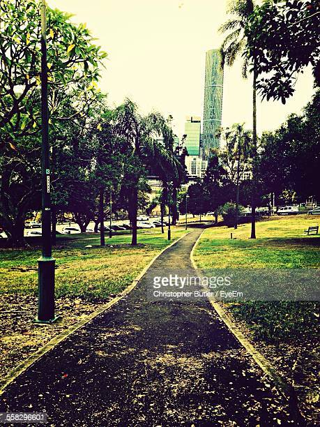 Footpath With Petals In Park, Built Structure In Background