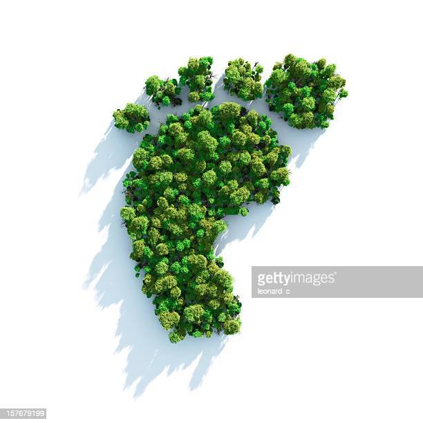 footprint comprised of greenery and shrubs - carbon dioxide stock photos and pictures