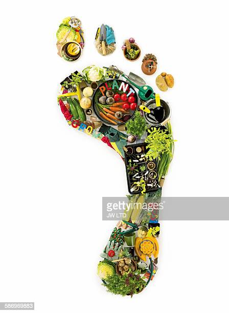 Footprint created from garden tools and vegtables