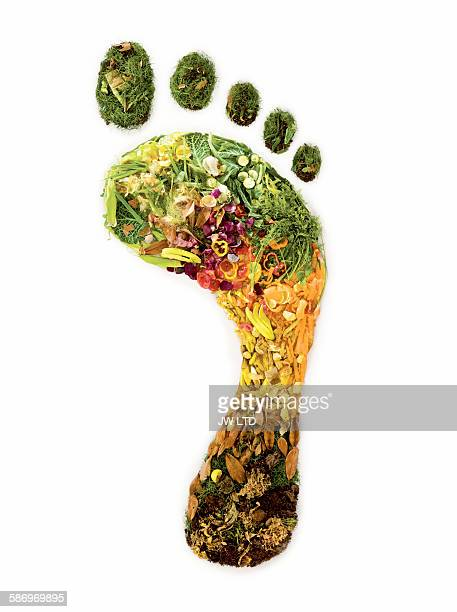 Footprint created from garden waste and vegtables