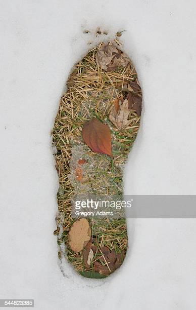 Footprint in snow exposing autumn colored leaves