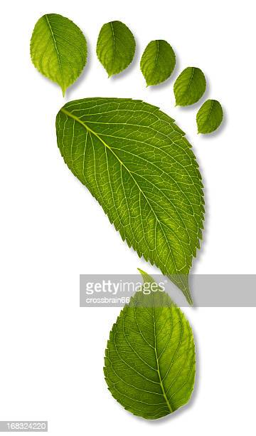 footprint of leaves with clipping path XXL