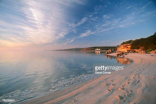 footprints along langebaans beach on south africas west coast at sunrise. churchhaven, langebaan lagoon, western cape province, south africa - western cape province stock pictures, royalty-free photos & images