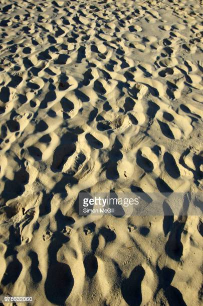 footprints and shoeprints in the sand on a beach - large group of objects stock pictures, royalty-free photos & images