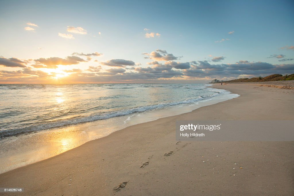 Footprints at the beach : Stock Photo