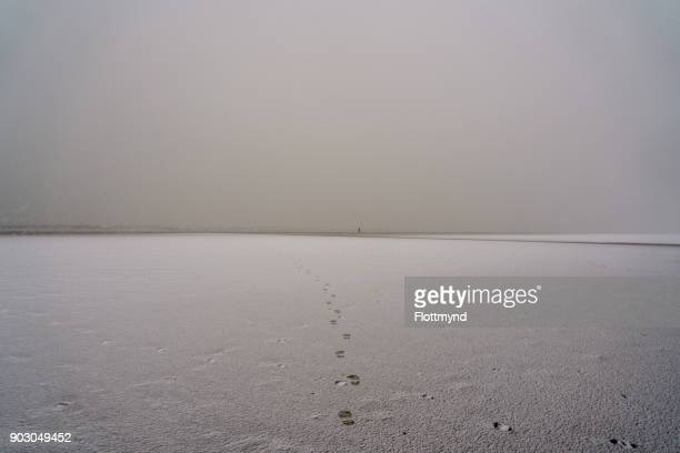 Footprints disappearing on the beach during a snowstorm