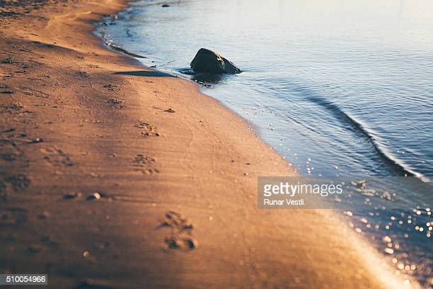 Footprints in sand at sunset