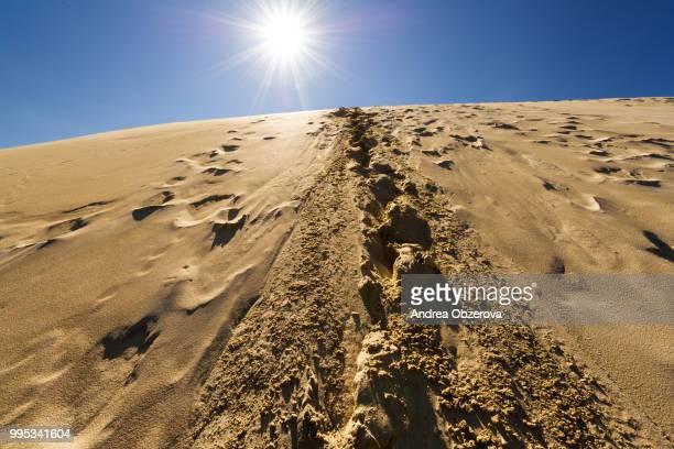 Footprints in sand dunes, Sahara, Morroco
