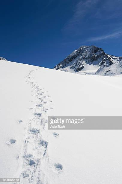 Footprints in snow, French Alps