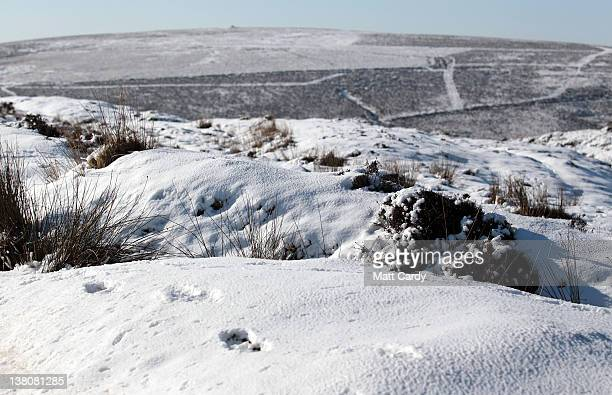 Footprints in snow that has settled are seen on Dartmoor on February 2, 2012 near Princetown, England. The UK is currently in the grips of a cold...