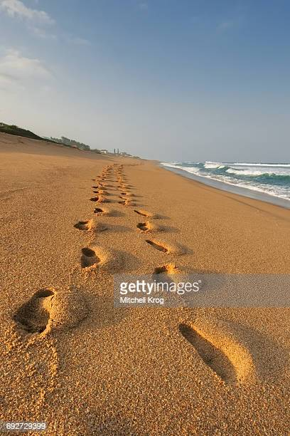 footprints in the beach sand at sunset, durban, kwazulu-natal province, south africa - durban beach stock photos and pictures