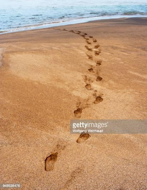 footprints in the sand, beach of playa de la solapa in ajuy, fuerteventura, canary islands, spain - solapa - fotografias e filmes do acervo
