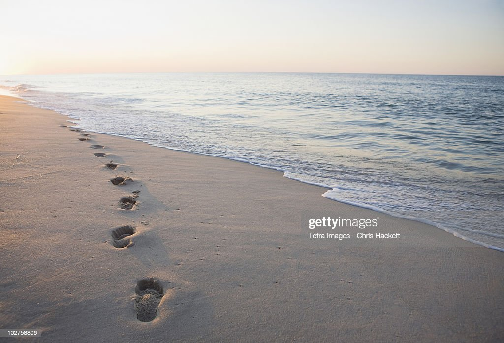 Footprints in the sand : Stock Photo