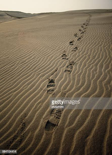 Footprints in the sand, Tottori Prefecture, Japan