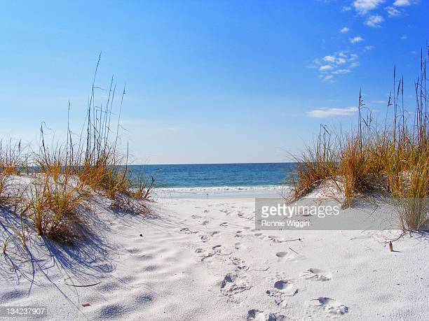 footprints in white sands of destin - destin beach stock pictures, royalty-free photos & images