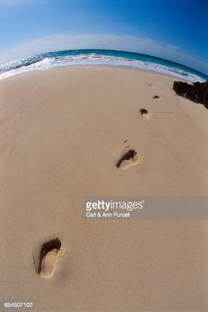 Footprints Leading to Ocean