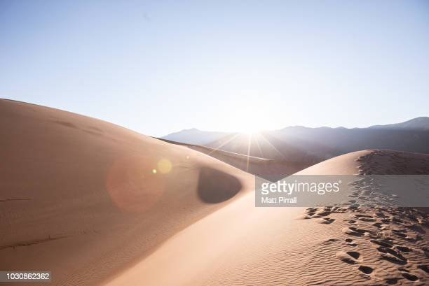 footprints on a sand dune in the desert at dawn - great sand dunes national park stock pictures, royalty-free photos & images