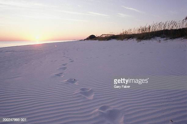 Footprints on beach at sunset, Emerald Coast, FL, USA