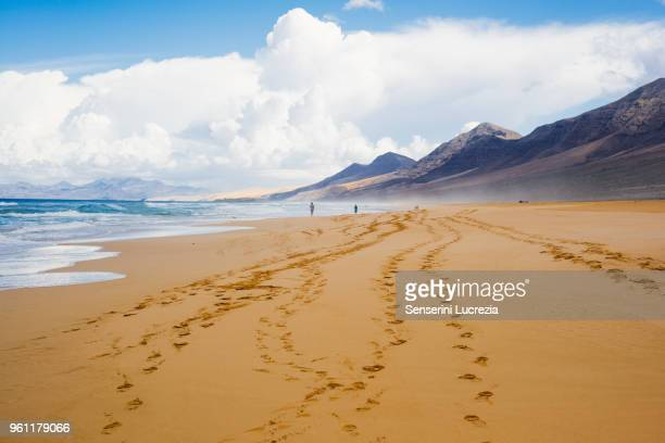 footprints on beach, corralejo, fuerteventura, canary islands - canary islands stock photos and pictures