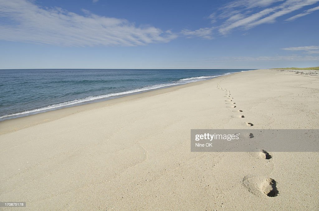 Footprints on beach, Nantucket : Stock Photo