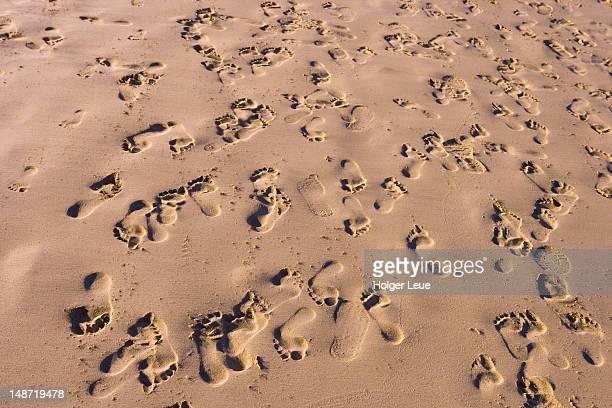 Footprints on Porto Santo beach.