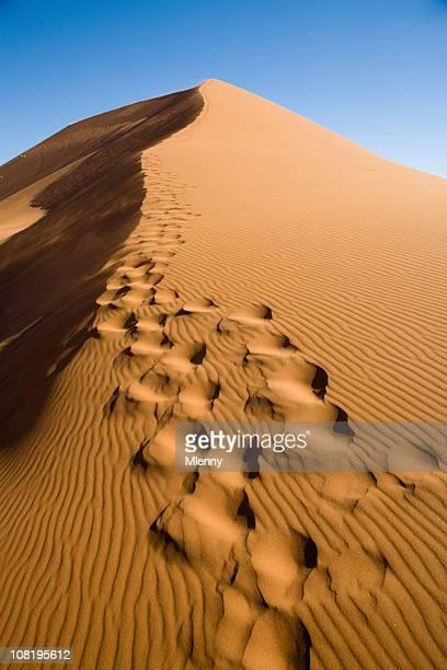 フットプリントの砂丘