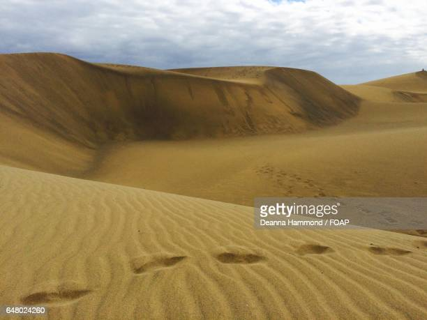footprints on sand dunes - file:sand_dunes.jpg stock pictures, royalty-free photos & images