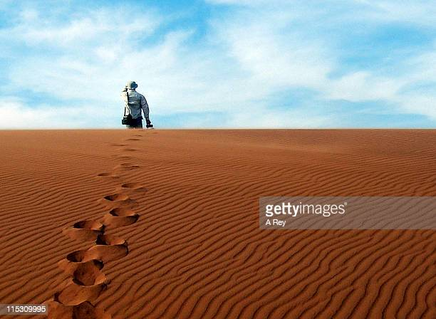 footprints on sand - namib naukluft national park stock pictures, royalty-free photos & images