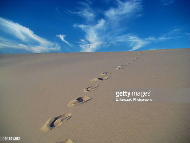 footprints on sand - barreirinhas stock pictures, royalty-free photos & images