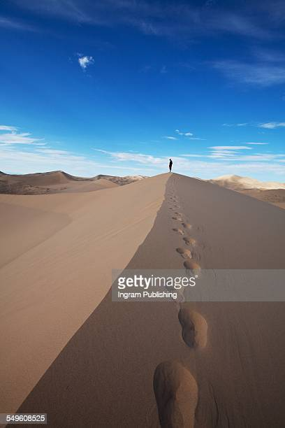 footprints on sand - gobi desert stock pictures, royalty-free photos & images
